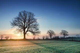 Foto: Herbstlandschaft